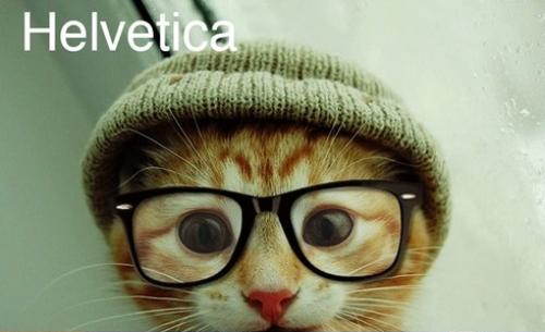 Understanding Fonts through Cats