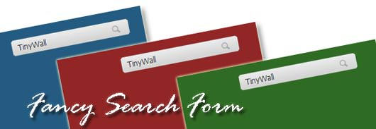 10+ Valuable CSS3 Search From Tutorials