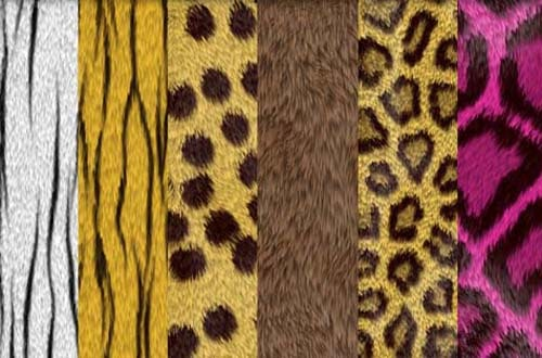 A Collection Of High Quality Free Fur Textures