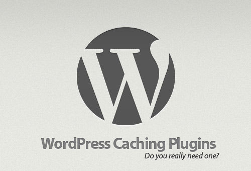 Why Do You Need WordPress Caching Plugins? Overview, Tips an
