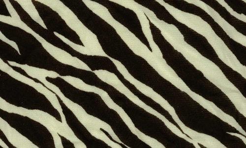 30 Striking Zebra Print Texture for Free Download