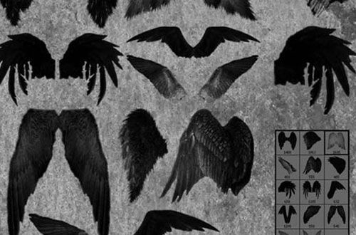 21 Sets Of Free Photoshop Wing Brushes