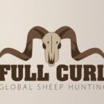 sheep_logo_1
