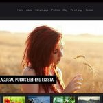 Highly_sophisticated_wordpress_theme3