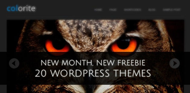 20 Themes for WordPress Websites