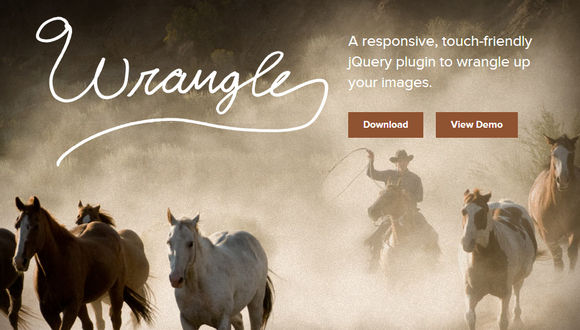 A responsive, touch-friendly jQuery plugin to wrangle up your images