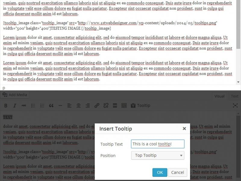 How to Add Custom Buttons for WordPress TinyMCE Editor