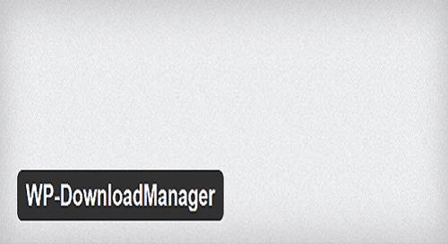 Top Plugins for Managing Files in WordPress