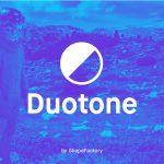 Create Beautiful Free Duotones